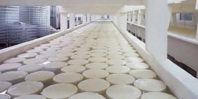 Γάλα και γαλακτοκομικά: Υποχρεωτική η αναγραφή προέλευσης στις συσκευασίες